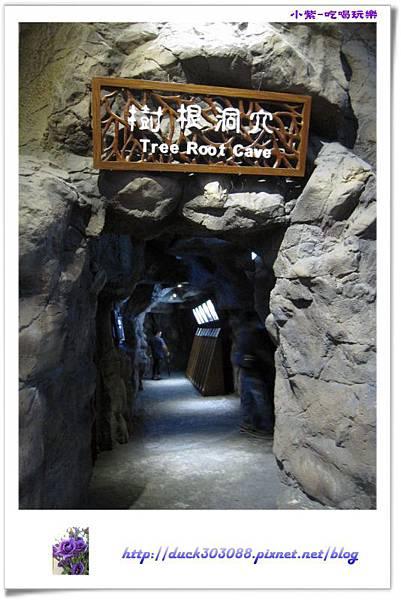 集集特有生物研究中心 (10).jpg