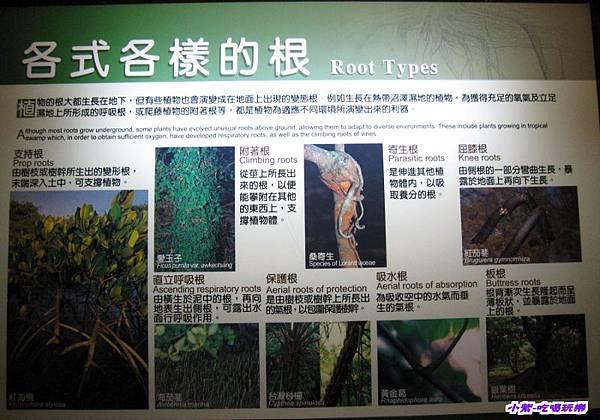 集集特有生物研究中心 (14).jpg