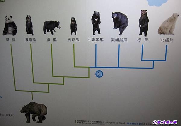集集特有生物研究中心 (23).jpg