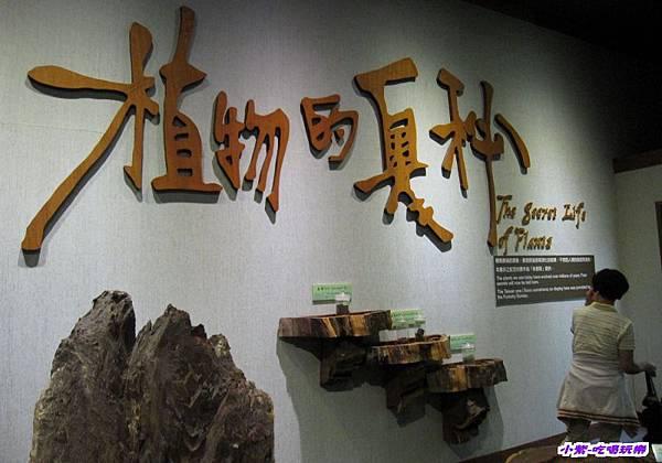 集集特有生物研究中心 (42).jpg