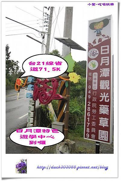 日月潭特色遊學中心-露營區 (8).jpg