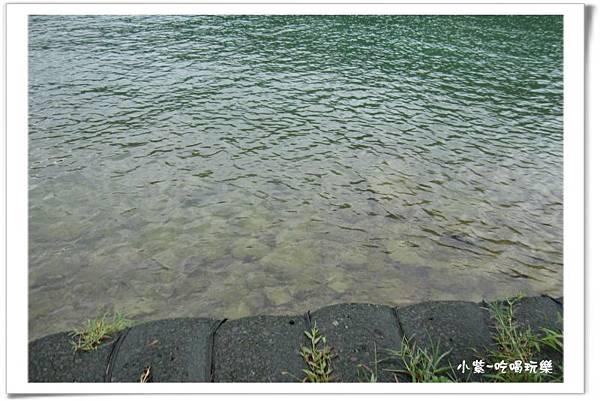 日月潭環潭自行車道 (9).jpg