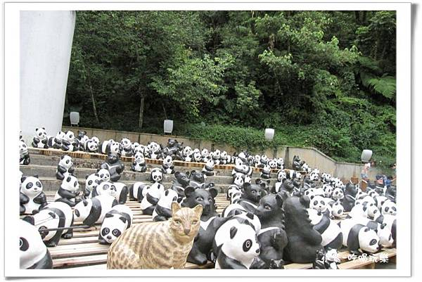 紙貓熊展-地理中心碑 (17).jpg