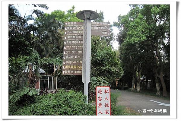 東海大學 (8).jpg