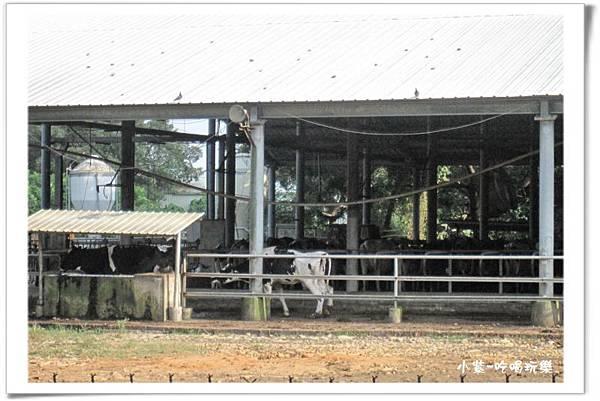 農牧場 (2).jpg