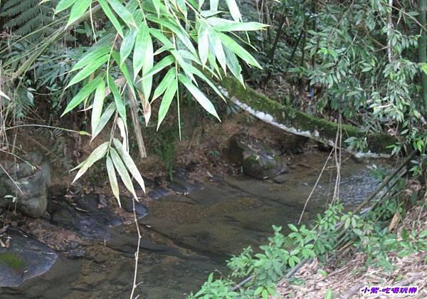 小溪4.jpg