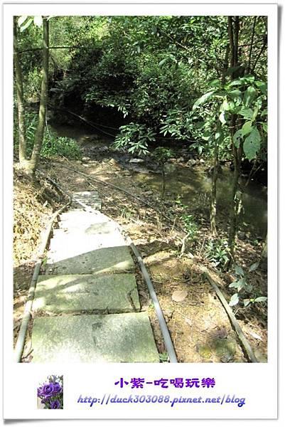 往溪邊的步道.jpg