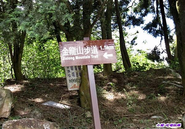 金龍山 (8).jpg