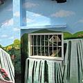 石龜溪的貓熊 (10).jpg