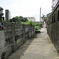 石龜溪的貓熊 (29).jpg
