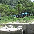 營地旁-油羅溪 (21).jpg