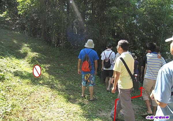 循右線走木棧道 (1).jpg