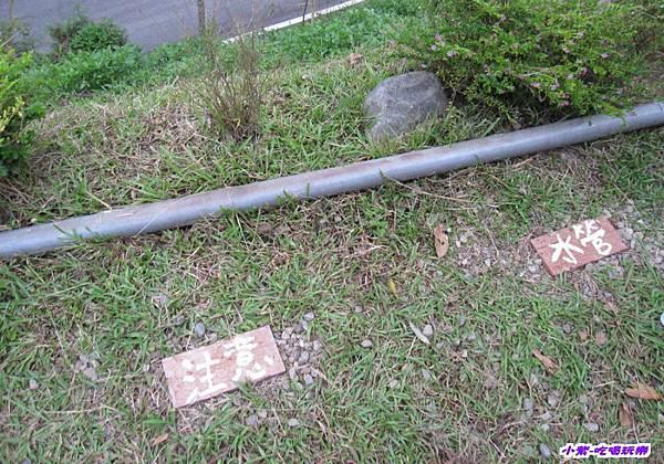 磚塊下埋有水管.jpg
