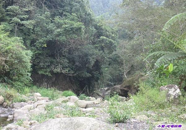 營地下方小溪 (7).jpg