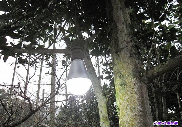 洗手台夜燈.jpg