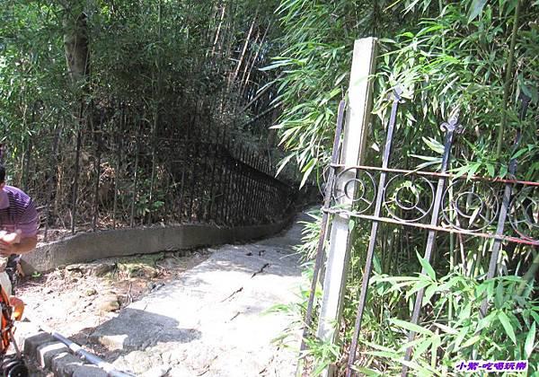 竹林步道 (1).jpg