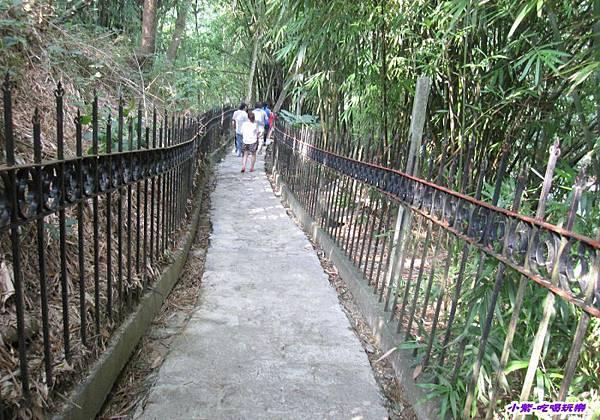竹林步道 (4).jpg