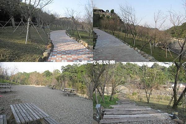 櫻花 步道.jpg