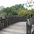 木橋 (2).jpg
