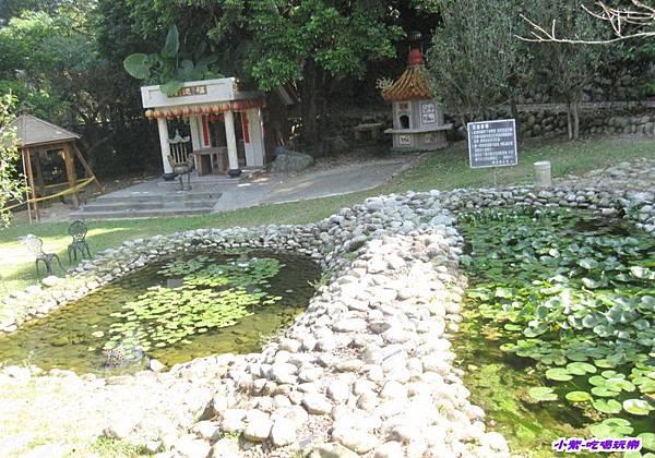 生態池 (2).jpg
