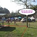 草皮營位界線.jpg