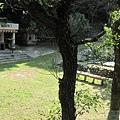 舊露營B區.jpg
