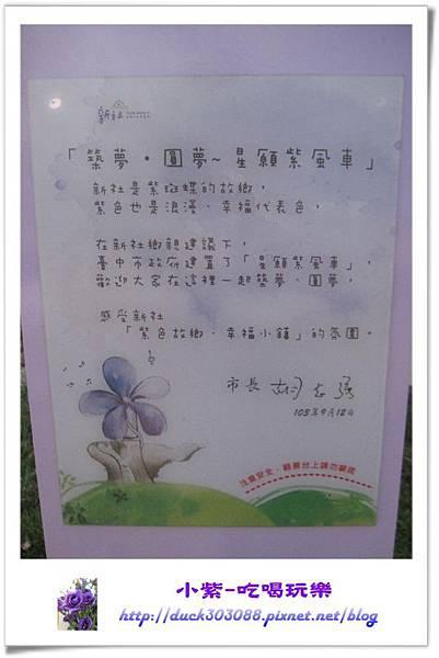 星願紫風車 (8).jpg