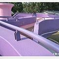 星願紫風車 (18).jpg