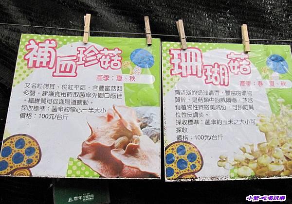 豐年生態農場 (20).jpg