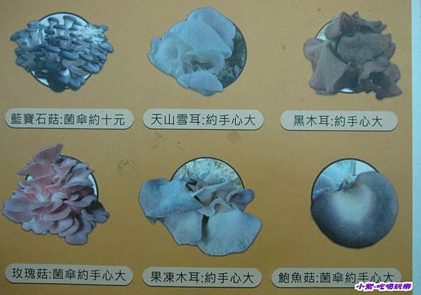 豐年生態農場 (44).jpg