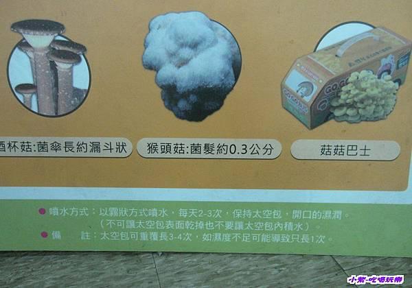 豐年生態農場 (45).jpg