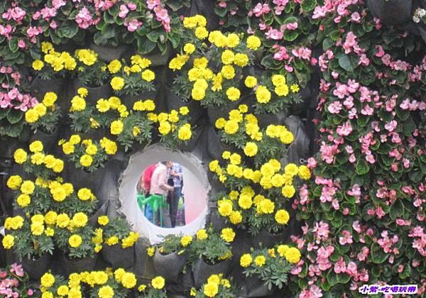 你是我的花朵 (2).jpg