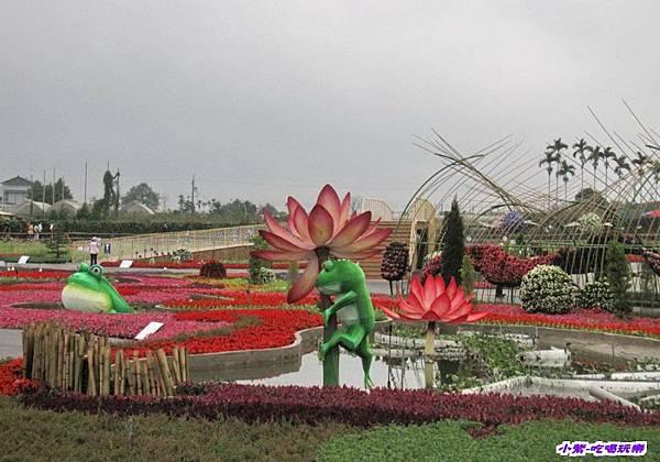 蛙ㄟ後花園1.jpg