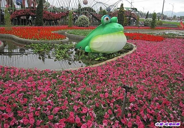 蛙ㄟ後花園 (1).jpg