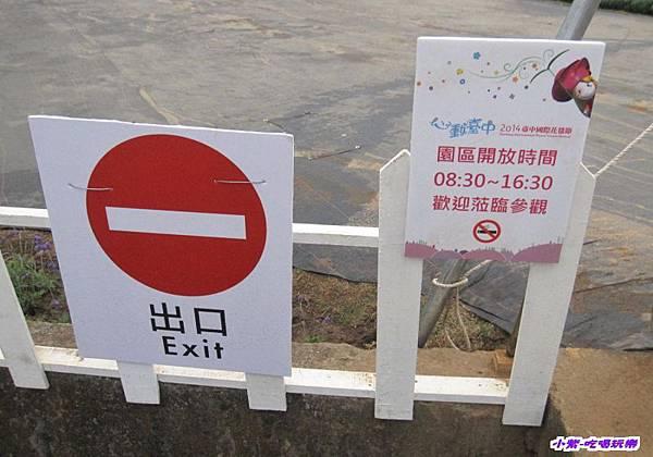 臺中國際花毯節 (6).jpg