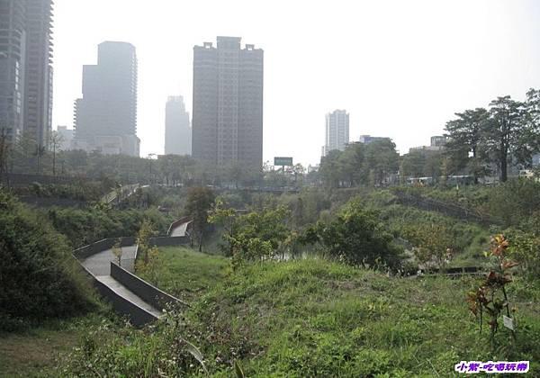 秋紅谷生態公園 (1).jpg