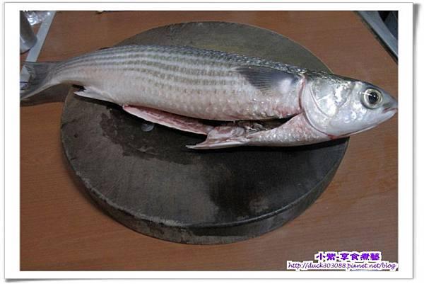 烏魚.jpg