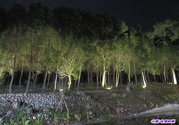 綠光森林 (2).jpg