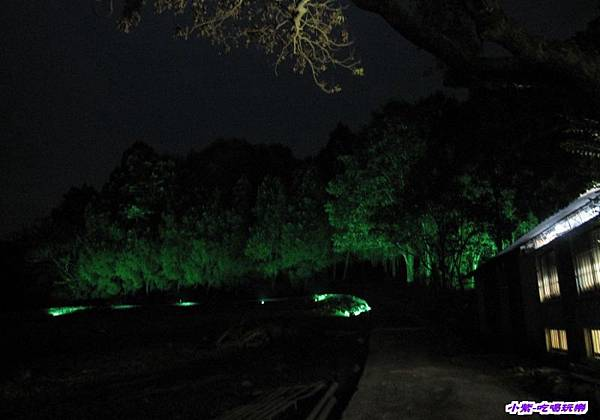 綠光森林 (3).jpg
