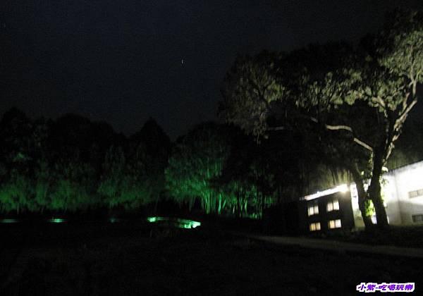 綠光森林 (4).jpg
