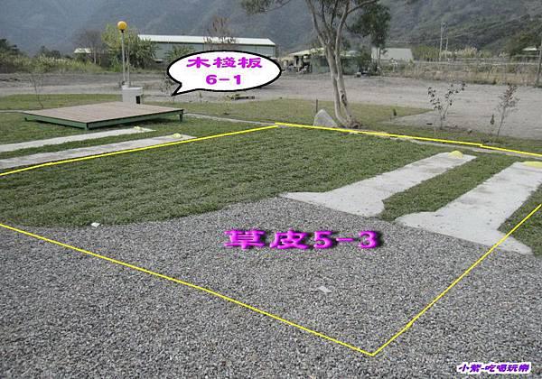 草皮5-3.jpg