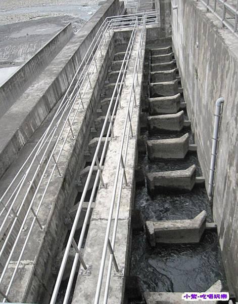士林大壩 (3).jpg
