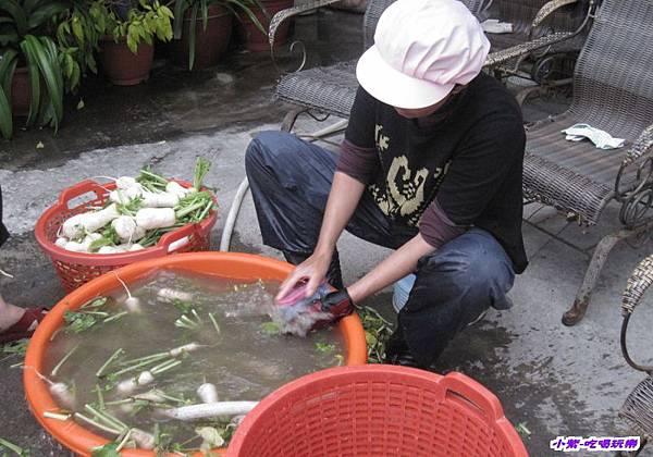 洗人蔘蘿蔔.jpg
