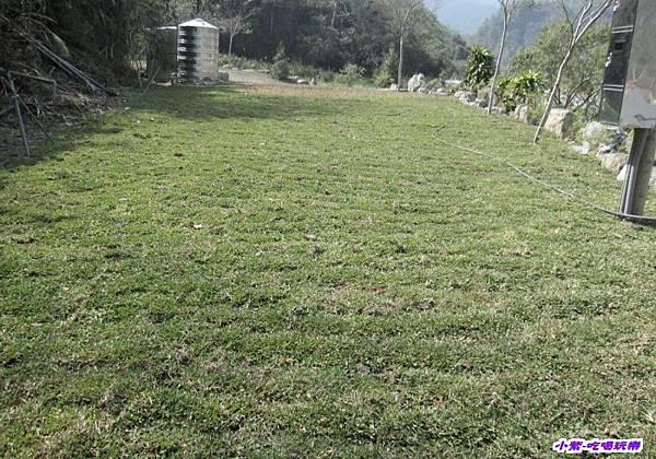 反向拍高台草皮區.jpg