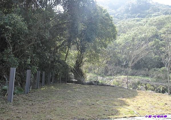 野溪景觀區 (2).jpg
