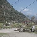 營地門口往外看松鶴橋.jpg