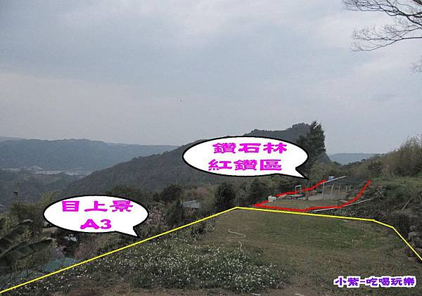 A3(3).jpg