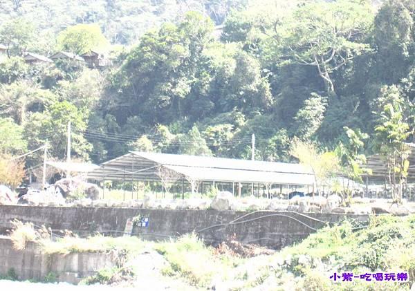 對面營地-松滋 (1).jpg