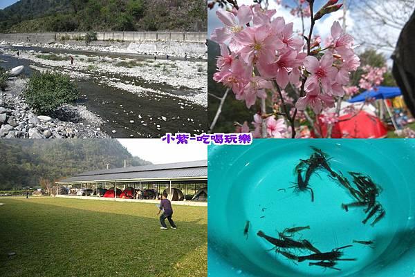 松滋露營趣2015.0227.jpg