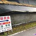 香菇農場 (4).jpg